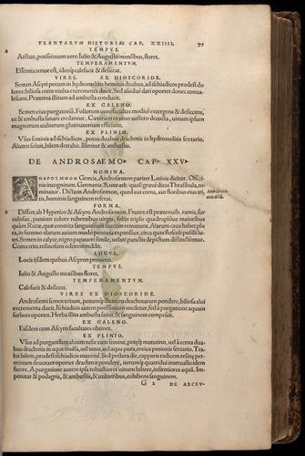 Image of Fuchs-1542-075