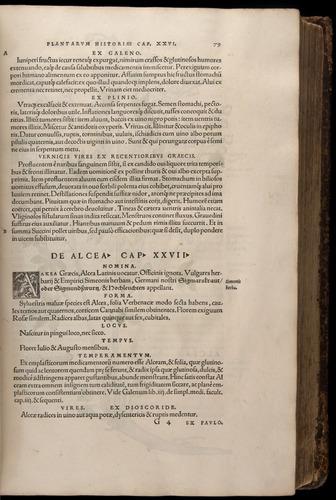 Image of Fuchs-1542-079