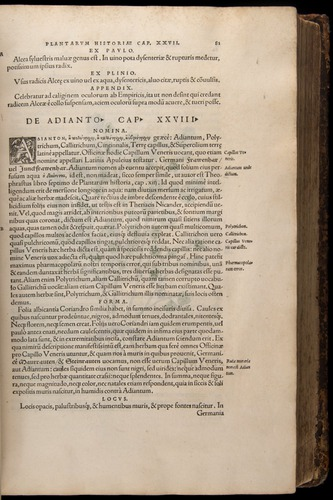 Image of Fuchs-1542-081