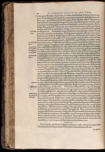 Image of Fuchs-1542-092