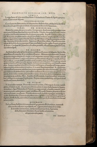 Image of Fuchs-1542-093