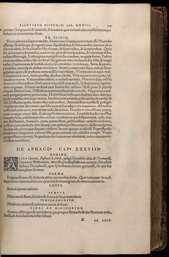 Image of Fuchs-1542-109