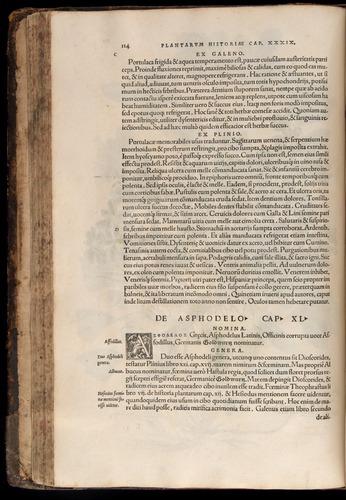 Image of Fuchs-1542-114
