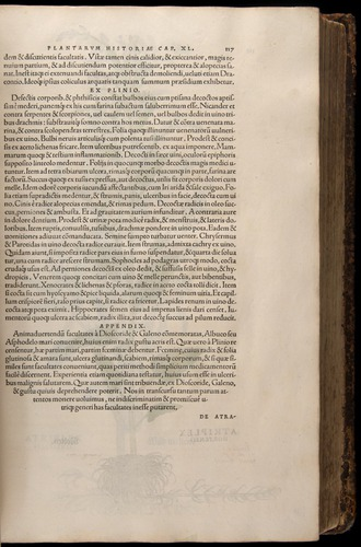Image of Fuchs-1542-117