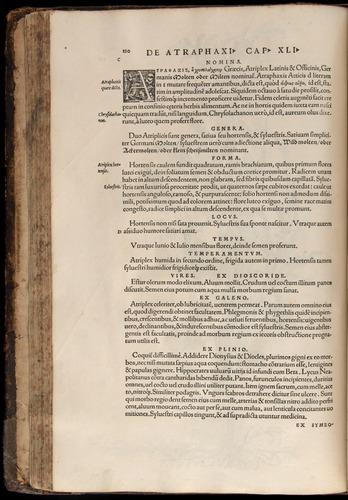 Image of Fuchs-1542-120