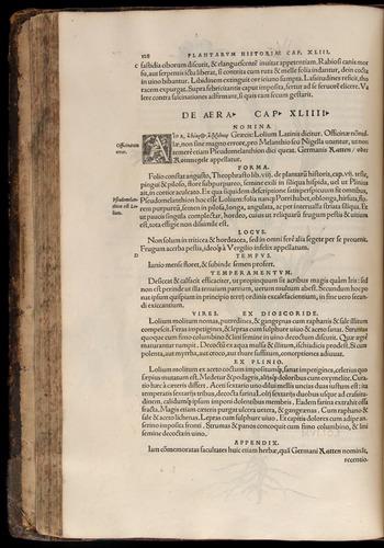 Image of Fuchs-1542-128