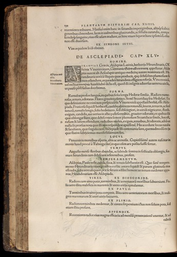 Image of Fuchs-1542-130