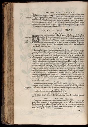 Image of Fuchs-1542-132