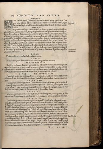 Image of Fuchs-1542-135