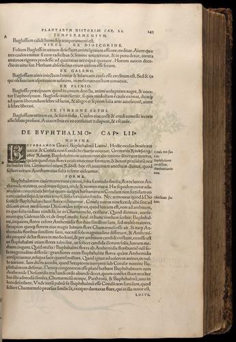 Image of Fuchs-1542-143