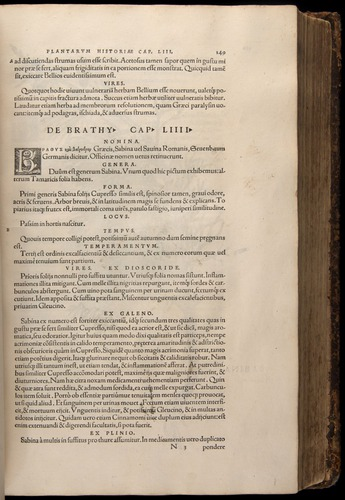 Image of Fuchs-1542-149