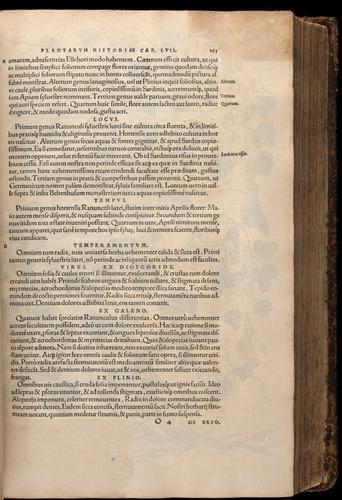 Image of Fuchs-1542-163