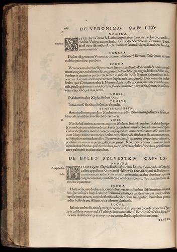 Image of Fuchs-1542-168