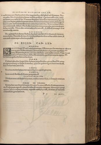 Image of Fuchs-1542-171