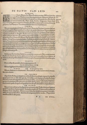 Image of Fuchs-1542-173