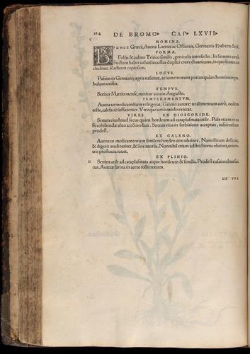 Image of Fuchs-1542-184