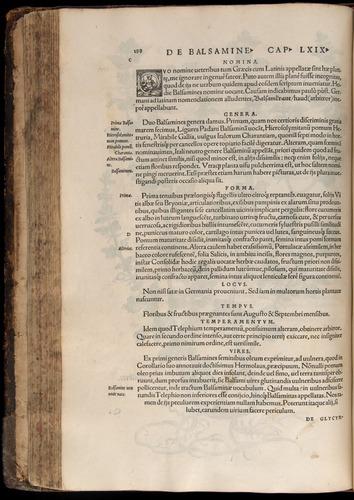 Image of Fuchs-1542-188