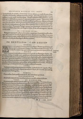 Image of Fuchs-1542-199