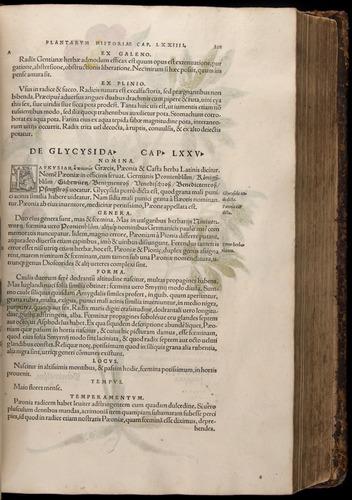 Image of Fuchs-1542-201