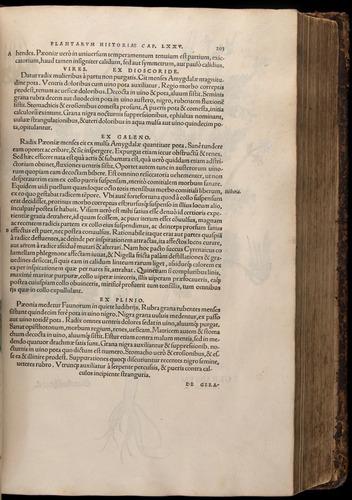 Image of Fuchs-1542-203
