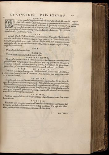 Image of Fuchs-1542-217