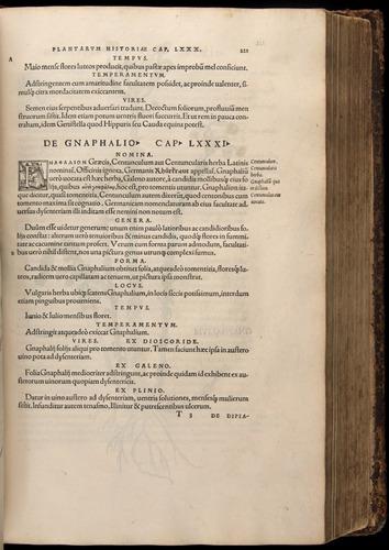Image of Fuchs-1542-221