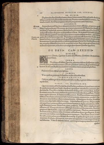 Image of Fuchs-1542-228