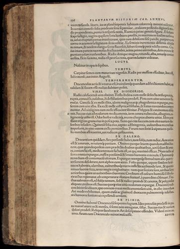 Image of Fuchs-1542-236