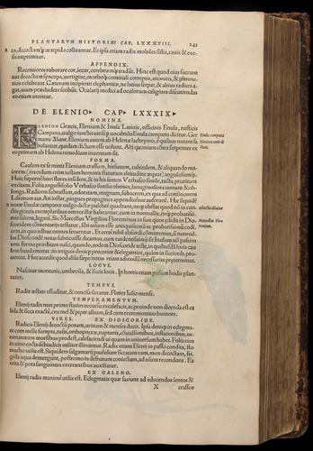 Image of Fuchs-1542-241