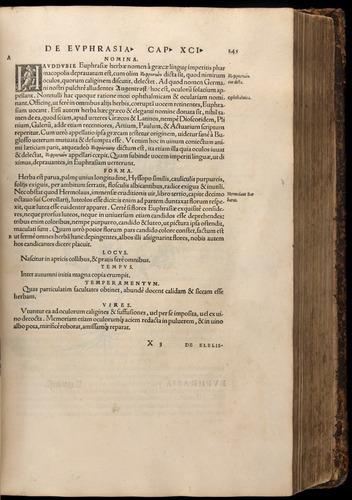 Image of Fuchs-1542-245