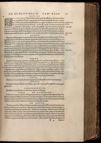 Image of Fuchs-1542-247