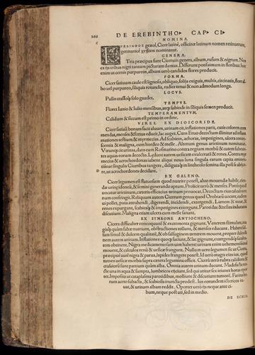 Image of Fuchs-1542-266