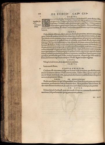 Image of Fuchs-1542-268