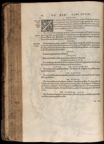 Image of Fuchs-1542-282