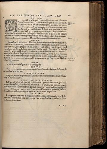 Image of Fuchs-1542-285