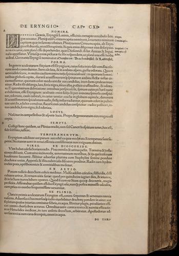 Image of Fuchs-1542-297