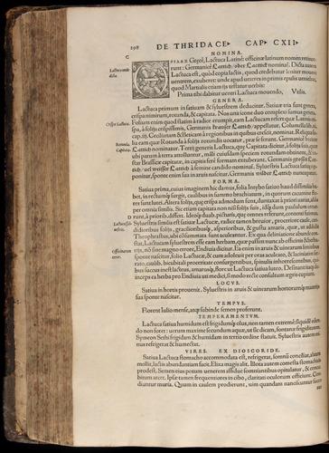 Image of Fuchs-1542-298