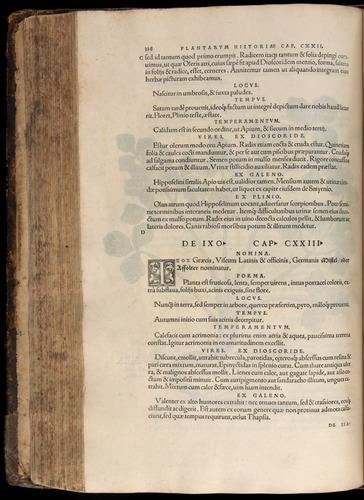 Image of Fuchs-1542-328