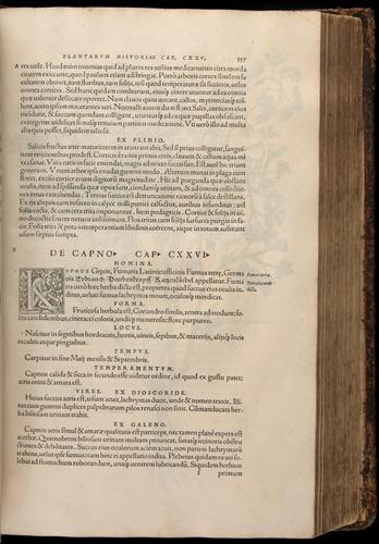 Image of Fuchs-1542-337