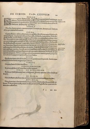 Image of Fuchs-1542-341