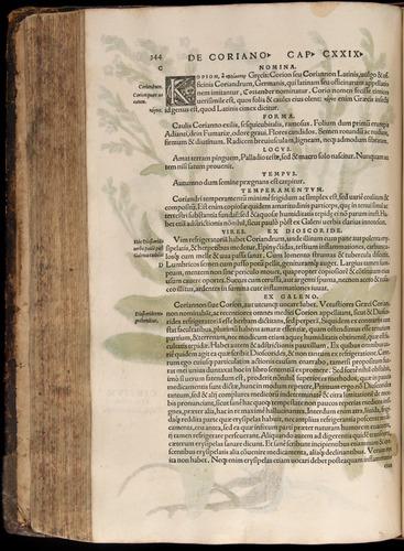 Image of Fuchs-1542-344