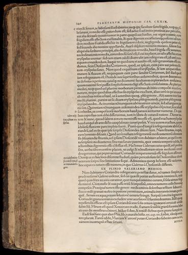 Image of Fuchs-1542-346
