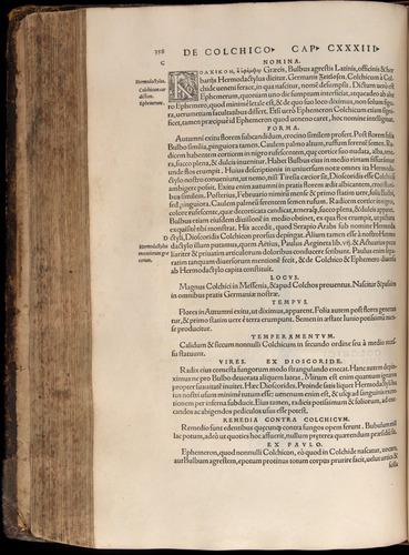 Image of Fuchs-1542-358