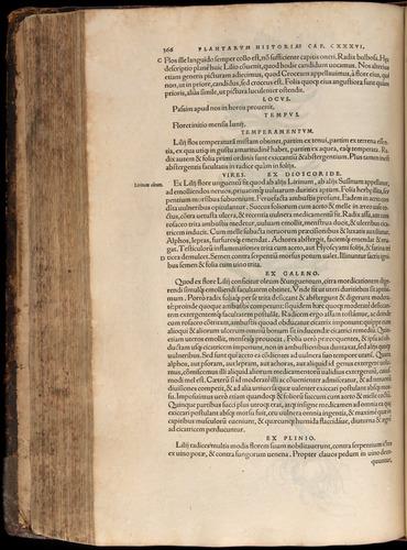 Image of Fuchs-1542-366