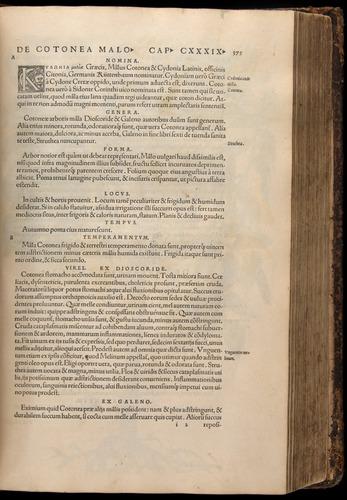 Image of Fuchs-1542-375