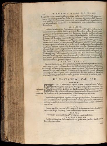 Image of Fuchs-1542-376