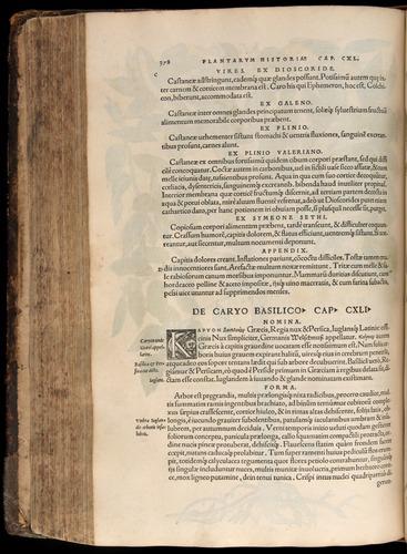 Image of Fuchs-1542-378