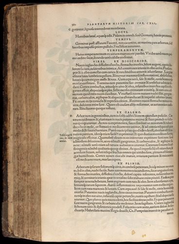 Image of Fuchs-1542-380