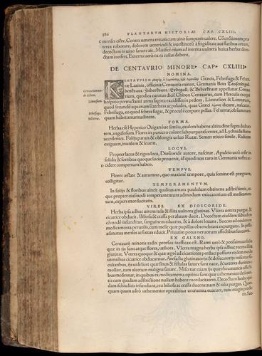 Image of Fuchs-1542-386