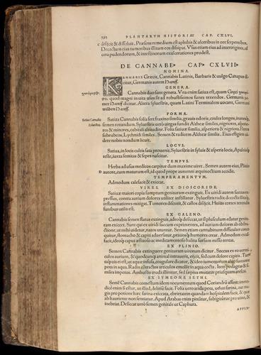 Image of Fuchs-1542-392